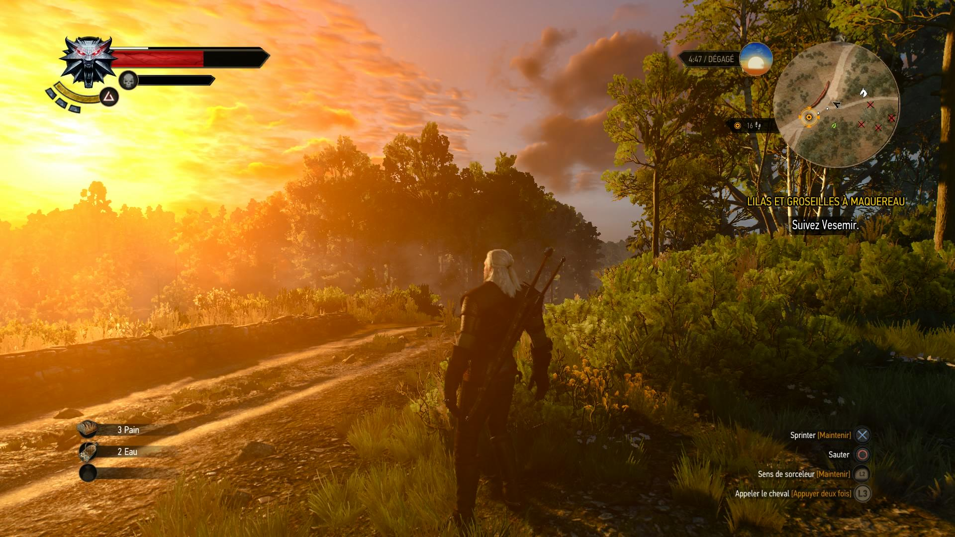 witcher-sunset